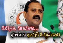 bhumana karunakar reddy used unparliamentary words on TDP