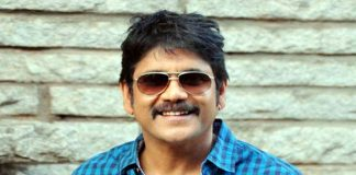 amala speaks about nagarjuna political entry
