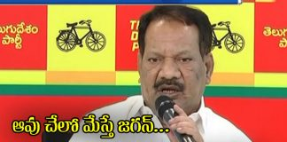 ap minister nakka anand babu comments on jagan