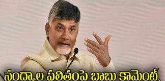 chandrababu comments on nandyal by elections results