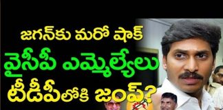 12-ysrcp-mlas-ready-for-jumping-into-tdp-party