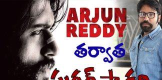 Arjun Reddy Movie Director Sandeep Reddy Next Movie Sugar Factory