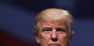 interesting-facts-about-trump-marriage-life-in-the-raising-trump-book