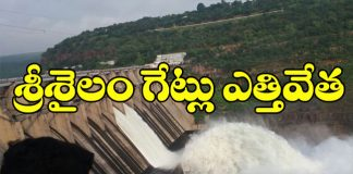 minister devineni uma open srisailam gates to releasee water