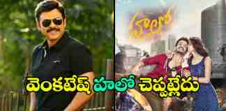 venkatesh-its-not-getting-guest-role-in-akhil-hello-movie