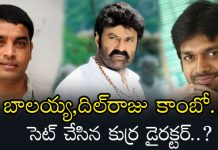 Anil Ravipudi Next Movie With Balakrishna In Dil Raju Production