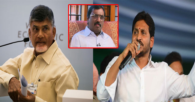ysrcp party and tdp party