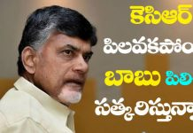Chandrababu says Top priority to Telugu language protection this year