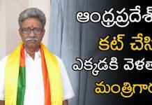 Minister Manikyala Rao comments on ap Govt