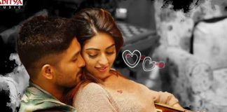 Lover Also Fighter Also Song From naa peru surya