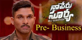 Naa Peru Surya Naa Illu India pre-Business