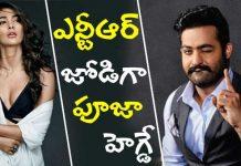Pooja Hegde to acts as Heroine in NTR Trivikram