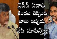chandrababu Naidu declares, TDP MPs to quit