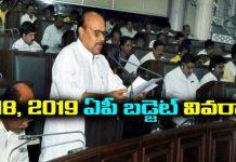 Ap budget 2018-19 details