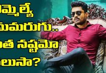 Kalyan Ram MLA movie losses 7 crore rupees