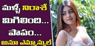 Anu Emmanuel Got Another Flop With Allu Arjun Na Peru Surya Movie