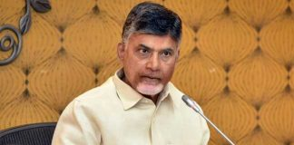 Chandrababu reacts on Thunderstorm death in AP