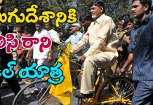 Cycle Yatra of TDP Is failing due to leaders