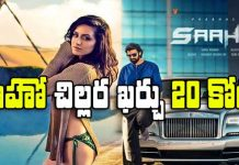 Saaho movie Dubai Hotel and Travelling cost 20 cr