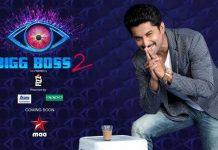 Telugu Big Boss 2 Promo
