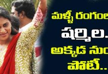 YS Sharmila Will Contest In 2019 Elections From Ongole or Kadapa