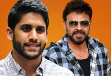 Venky Chaitu Movie Title Fixed Is Venkymama