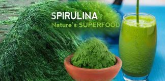 Benefits of Spirulina for Weight Loss
