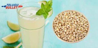 Health benefits of barley seeds