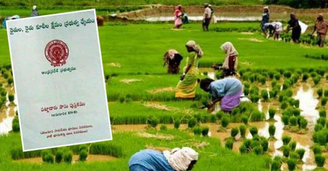 ap govt plannings on passbook in 21 days for farmers