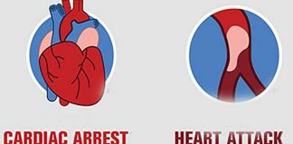 difference between cardiac arrest and heart attack