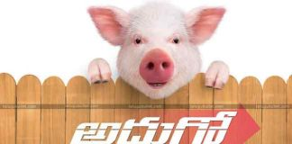 Ravi Babu Adhugo Releasing On November 7th