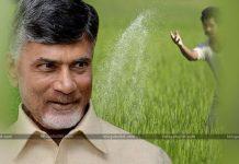 Annadata Sukhibhava Declared In AP