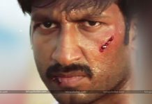 Hero Gopichand Severely Injured In Shoot