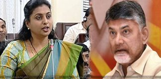 MLA Roja Comments on Chandrababu