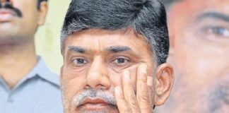 Chandrababu looks in the sky