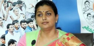 jagan gave key position to roja