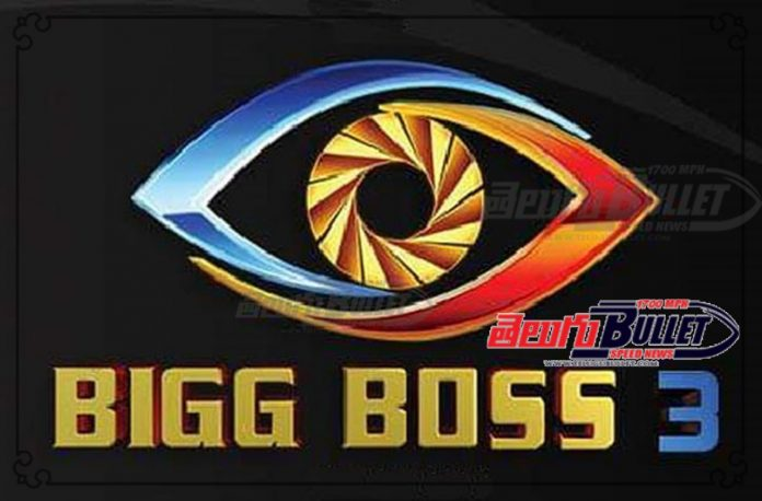 big boss 3 final contestant list out